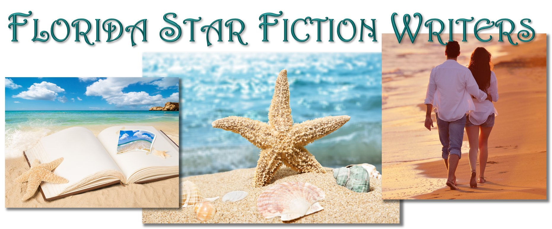 Florida Star Fiction Writers